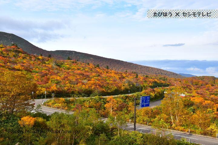 栗駒山荘の紅葉