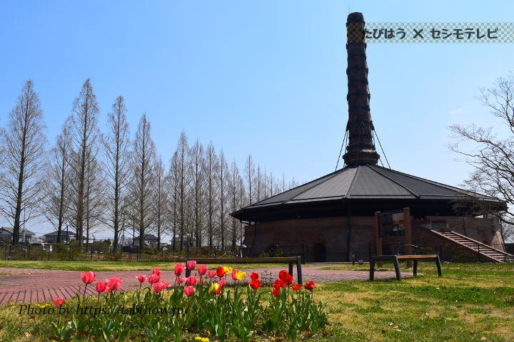 野木町煉瓦窯のチューリップ