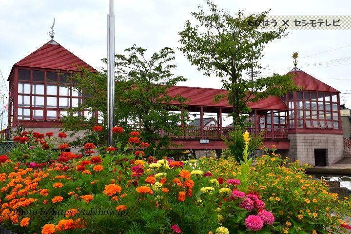 富山県の花