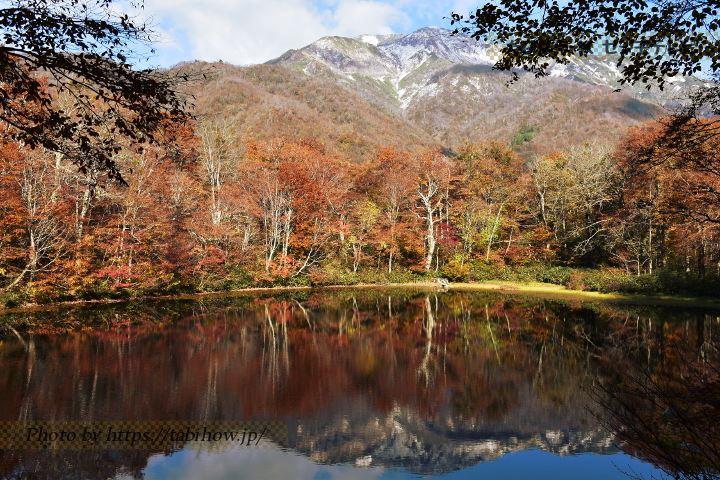 刈込池の紅葉