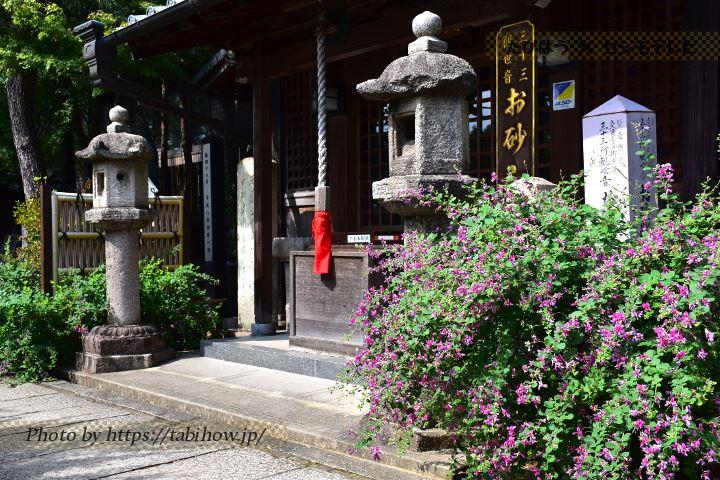 大阪府の花特集