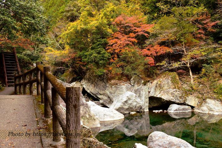 中津渓谷の紅葉