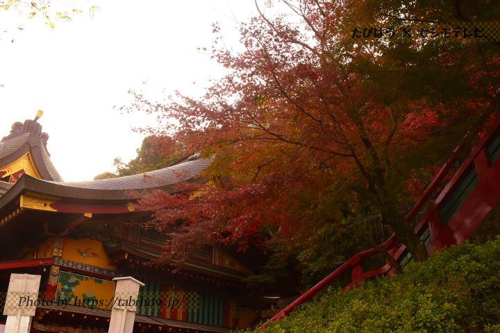 祐徳稲荷神社の紅葉