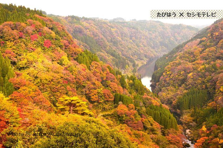 蘇陽峡の紅葉