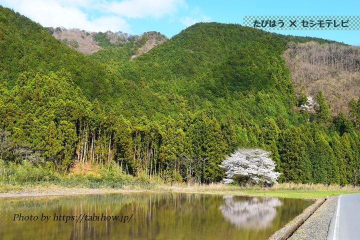 栃木県の宿