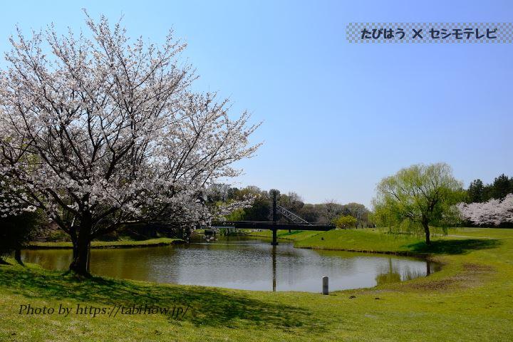 茨城県の絶景スポット