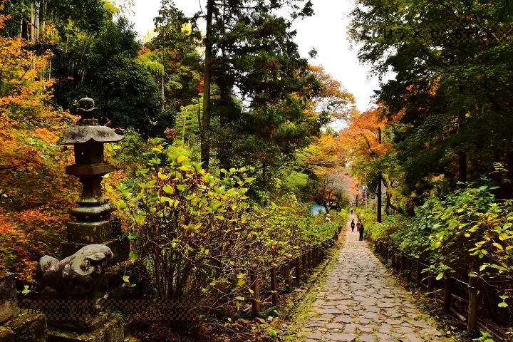 栃木県の絶景スポット