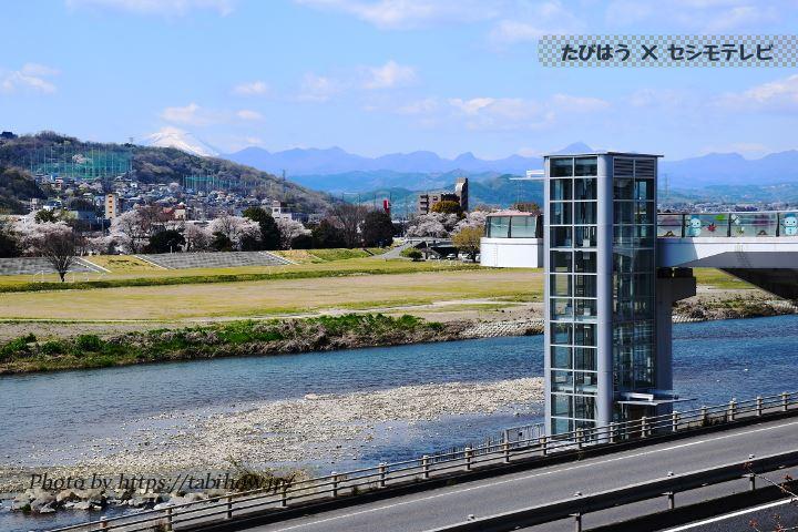 高崎公園 烏川の展望