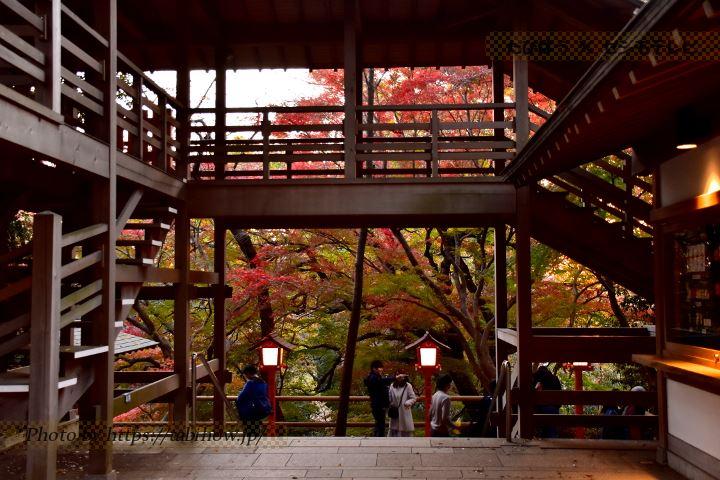 東京都の絶景スポット