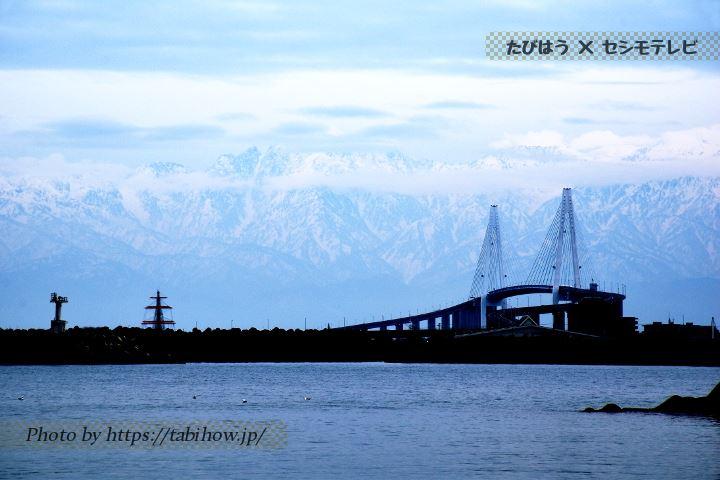 新湊漁港から見る新湊大橋