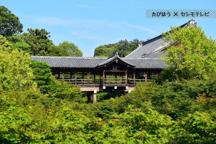 東福寺 通天橋