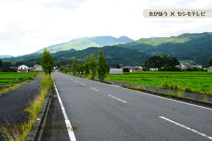 県道124号 和田町の直線道路