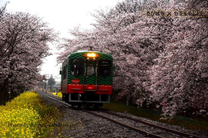 栃木県の鉄道撮影地