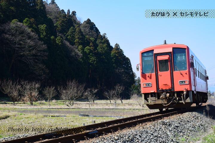 越前東郷→一乗谷