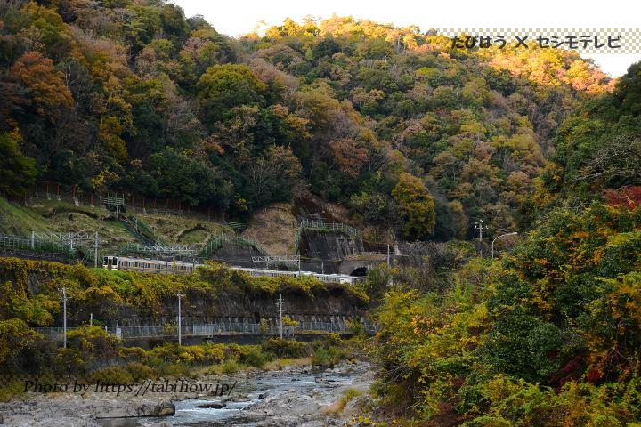 高蔵寺←定光寺