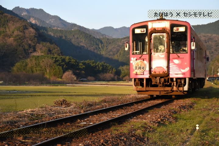錦川清流ラッピング列車 ひだまり号