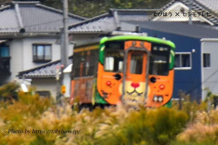 南予キャラクター列車