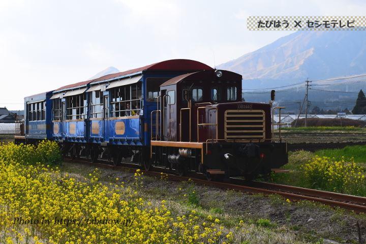 トロッコ列車ゆうすげ号