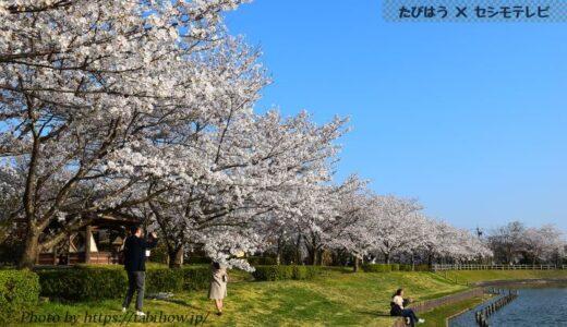 茨城県の花畑32品種68名所!春夏秋冬の見頃