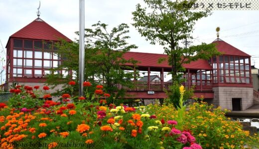 富山県の花畑33品種69名所!春夏秋冬の見頃