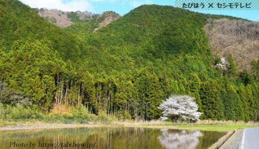 栃木県で大浴場付の格安宿5軒!人気ホテルと温泉旅館