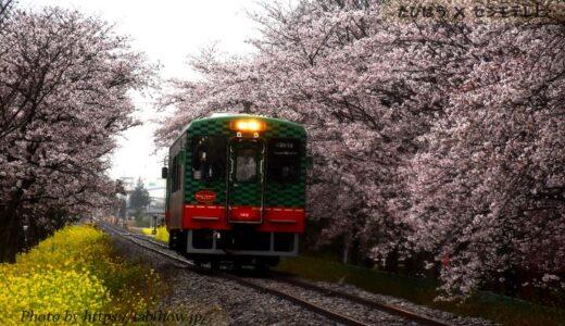 栃木県の鉄道撮影地4選!JR/真岡鐵道の名所