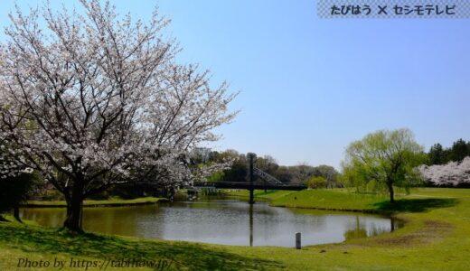 茨城県の人気絶景スポット5選!インスタ映え観光名所