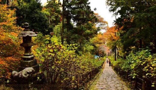 栃木県の人気絶景スポット4選!インスタ映え観光名所