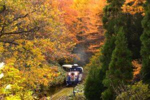 島根県の鉄道撮影地4選!JRや私鉄の名所