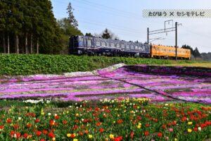 北海道・道南の鉄道撮影地10選!JRや私鉄の名所