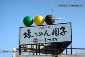 四国のオススメ銘菓6選!和洋菓子をお土産お取り寄せ